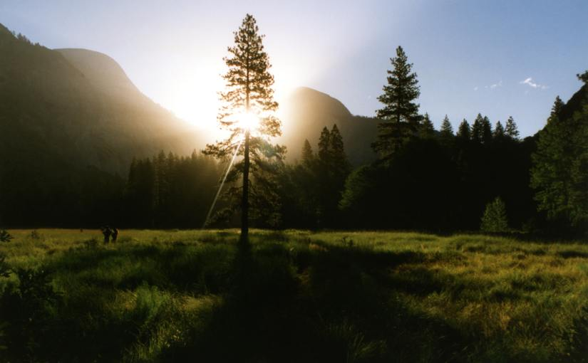 Evergreen Content Explained: How To Create It and How to UseIt